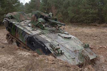 AMX10 P